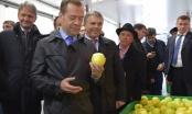В Ингушетию с рабочим визитом прибыл Дмитрий Медведев